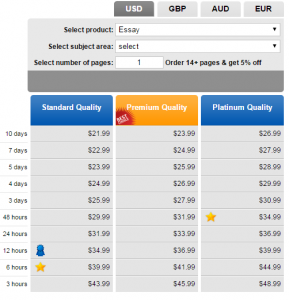 essayontime.com prices